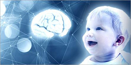 是宝宝脑部发育的「黄金时期」