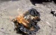 鍾斯的 iPhone 7冒煙著火。網圖