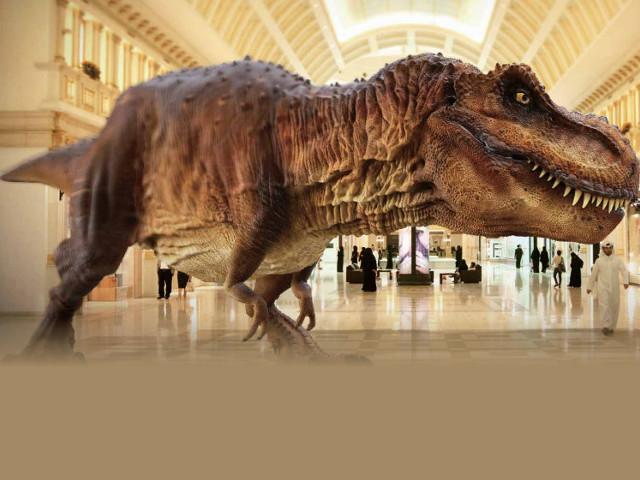 在第2至4周,更會重點介紹「肉食性恐龍-獸腳類恐龍」及「草食性恐龍-蜥腳形亞目和鳥臀目恐龍」。