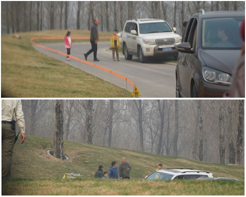 疑為一家人的遊客,自駕區參觀時無視危險,在白虎區下車遊覽。網圖