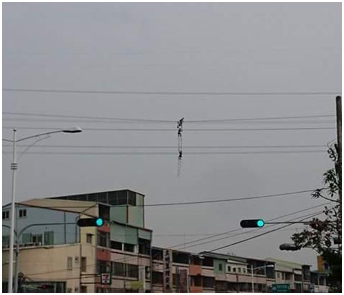 有網友笑說「根本是太陽馬戲團!」。爆料公社fb圖片