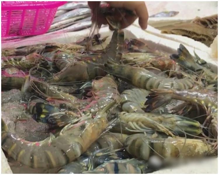 廣東男灸花了$50買冷凍蝦。央視網