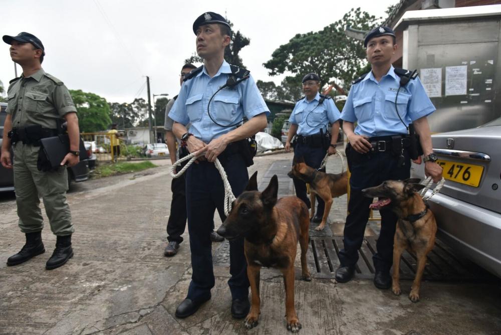 警方亦會派出大批機動部隊、警犬隊及特遣隊人員在野外加強巡邏。