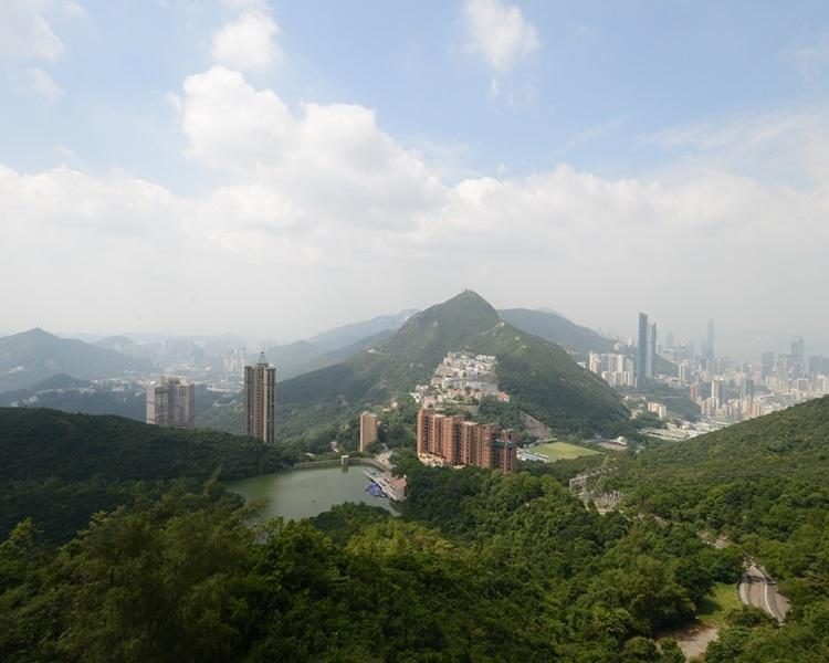 林雲峰指可思考在郊野公園附近作中密度發展晨運場所。資料圖片