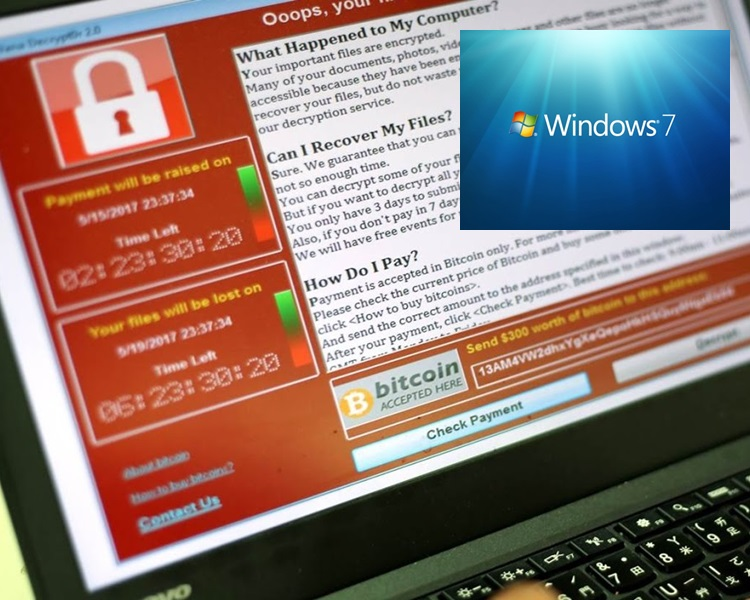 「WannaCry」中招者七成用「Windows 7」。網上圖片