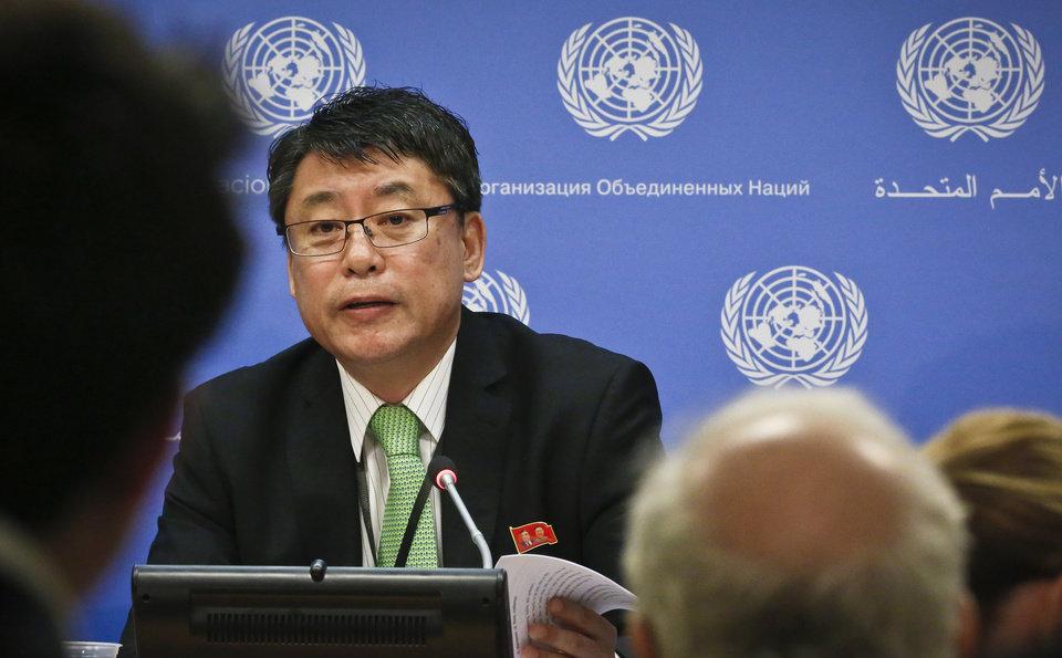 北韓駐聯合國副代表金仁龍。網上圖片