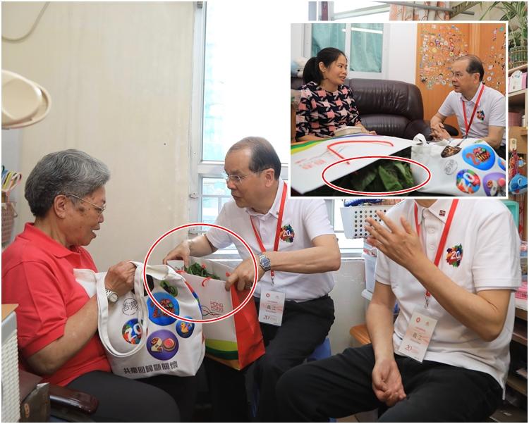 紅圈為行政長官梁振英親自裁種的有機莧菜。