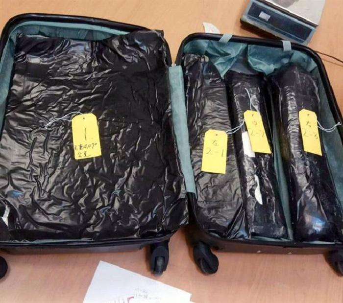 海關搜出8公斤可卡因。網上圖片