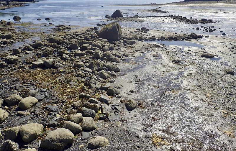 该捕鱼器据报是在一条有大量三文鱼出没的小溪口附近石墙发现。美联社