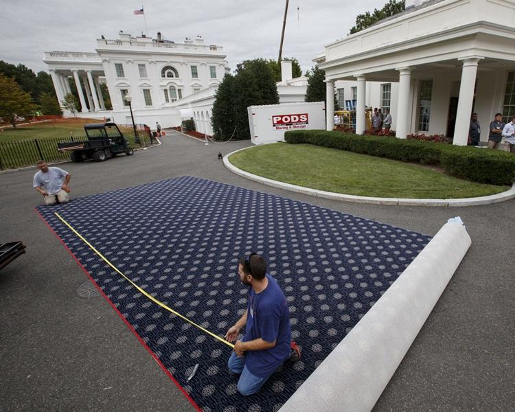 西翼所有地毯都要更換。AP