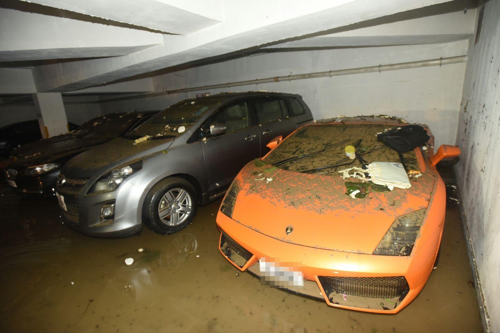 價值逾250萬元的林寶堅尼跑車(右)。徐裕民攝