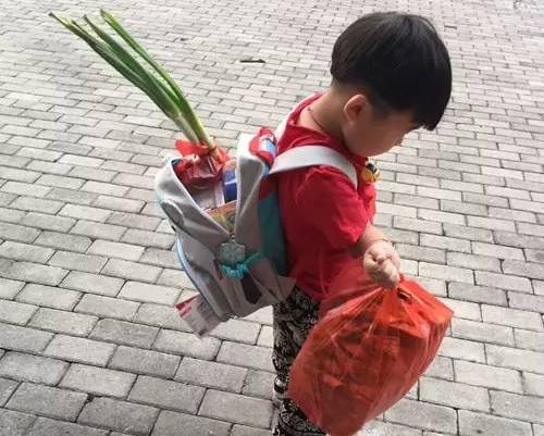書包裏插著兩棵大蔥,手中還拿著兩大袋東西的男童。 網上圖片