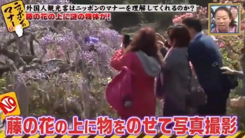 日本電視攝製隊揭發台灣旅客缺德行為。網上圖片
