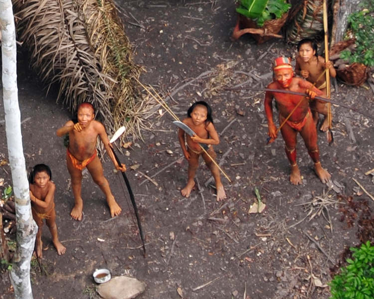 巴西亞馬遜森林的土著面臨各種的迫害。