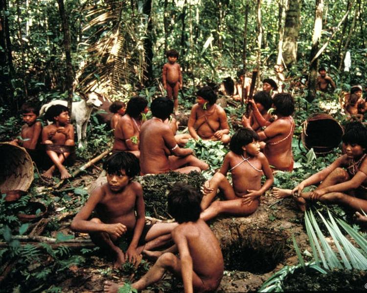 亞馬遜森林只有108名註冊了的土著。
