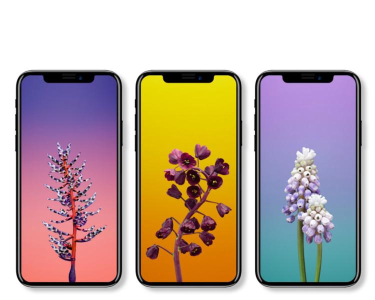 新iPhone很可能配備5.8吋OLED螢幕,並會移除Home鍵令屏幕變得更大。Benjamin Geskin圖片