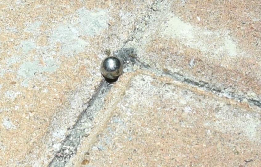 警方搜獲一粒鋼珠