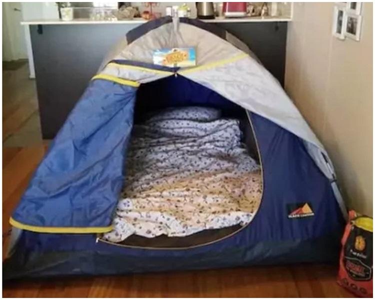 有租客認為帳篷非常舒適。網上圖片