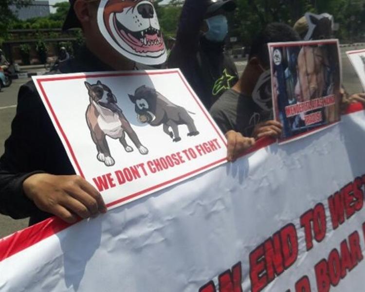 印尼動保團體早前亦到西爪哇省長辦公室前發起抗議活動。