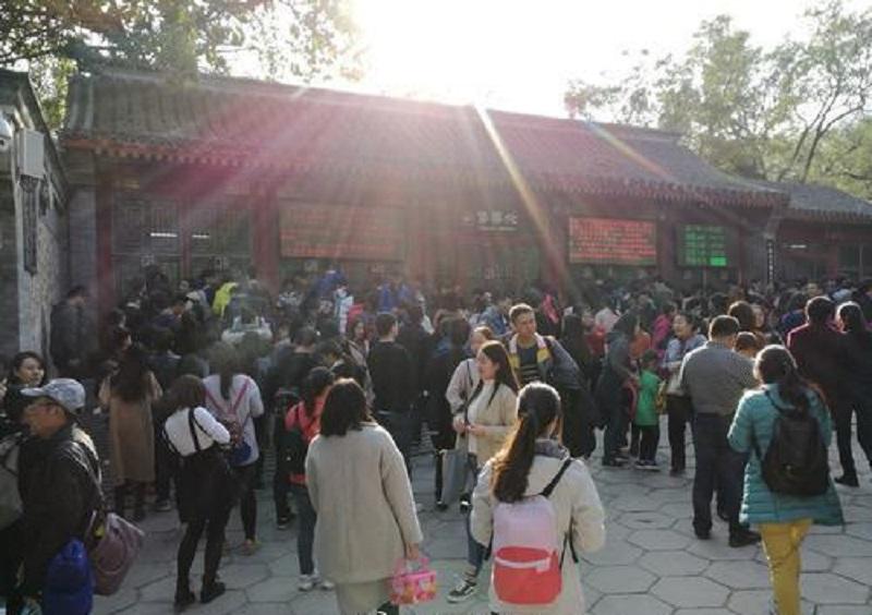 北京香山公園外有黃牛黨炒賣門票。網上圖片