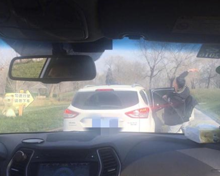 男子下車向熊群擲食物。