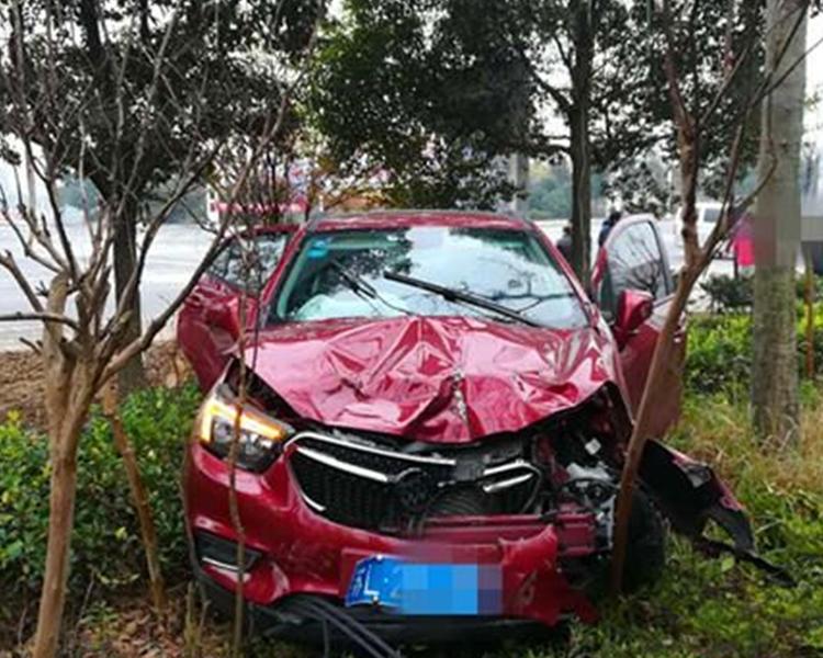 房車亦失控撞到路旁的綠化帶中。