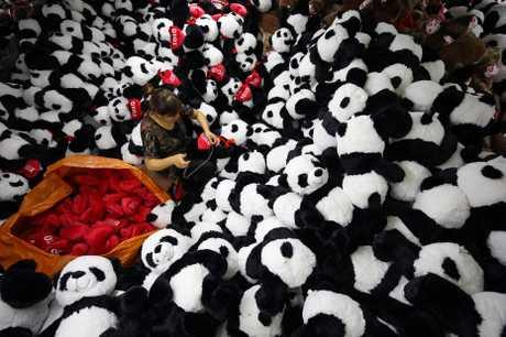 IMF發表研究報告指,中國經濟增長面臨三大不安因素威脅。新華社