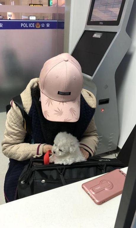 女大學生手抱著圖偷運回老家的狗BB。