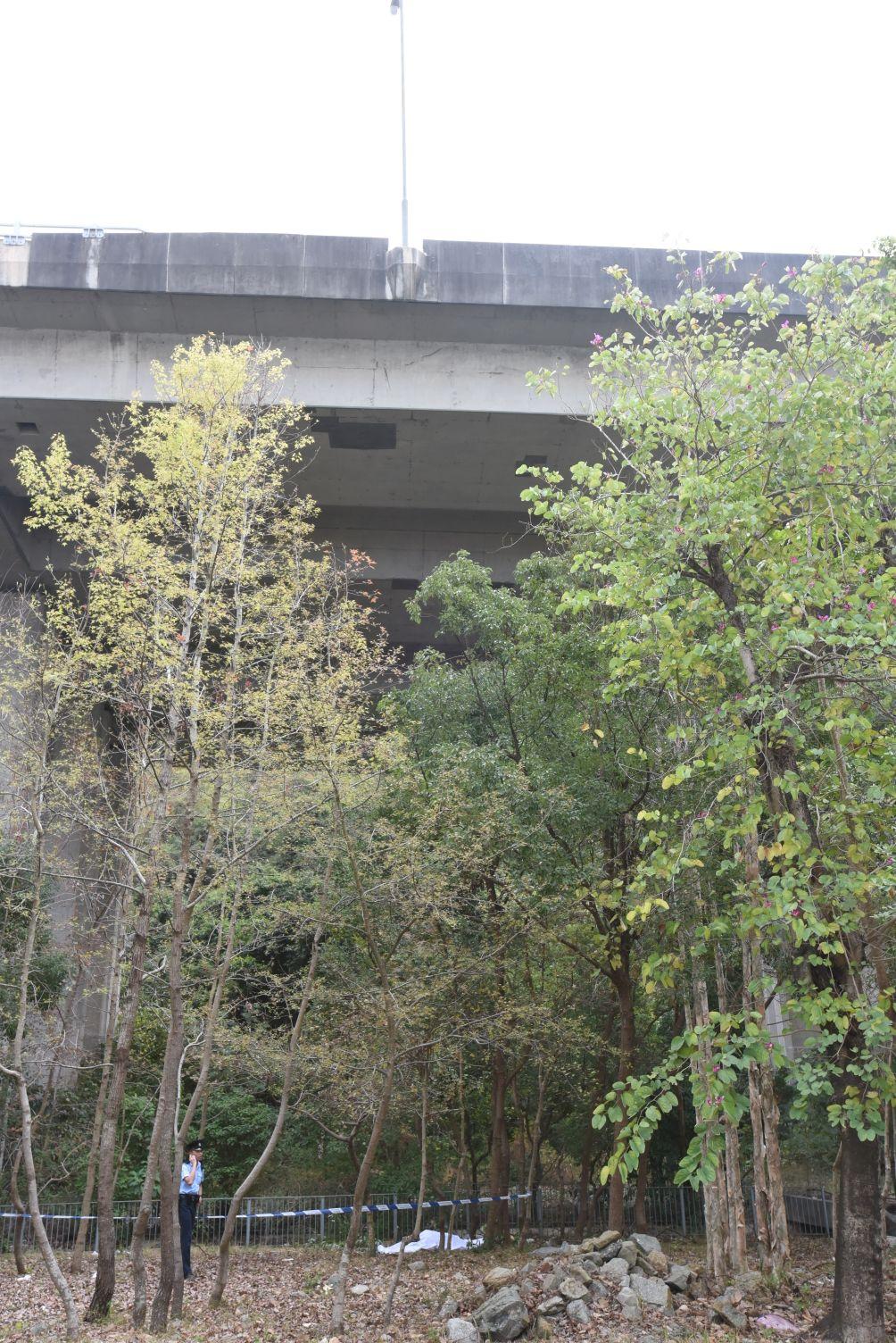 初步了解,男子在北大嶼山公路橋面跳下而亡。梁國峰攝