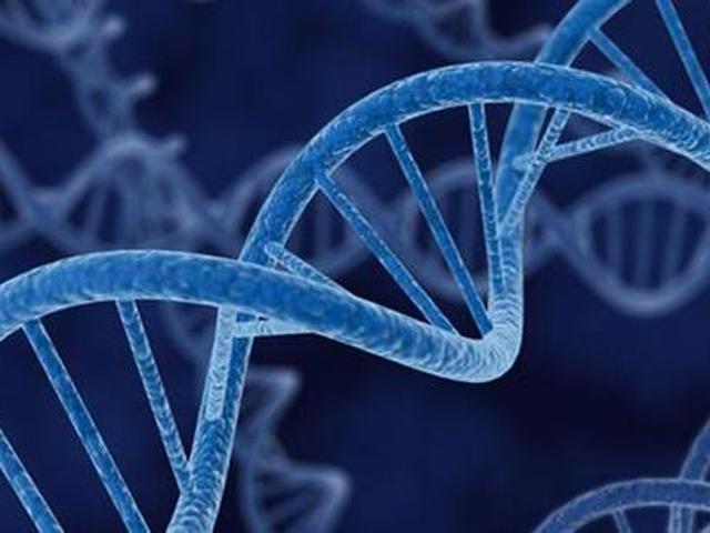 英國最新研究指出,一個人的「同理心」不單在成長的環境和經歷中形成,它與遺傳基因也有關係。 網圖