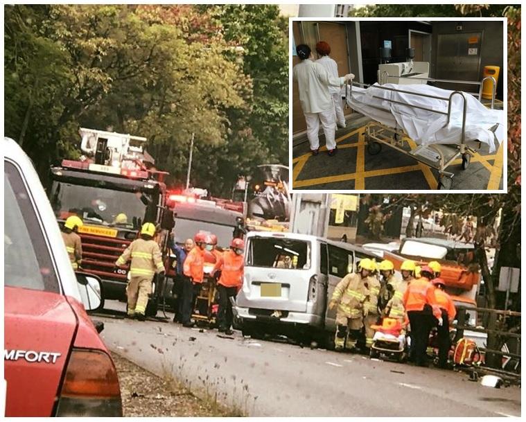 客貨車司機傷重死亡(小圖)。 讀者提供/網民Irene  Ng