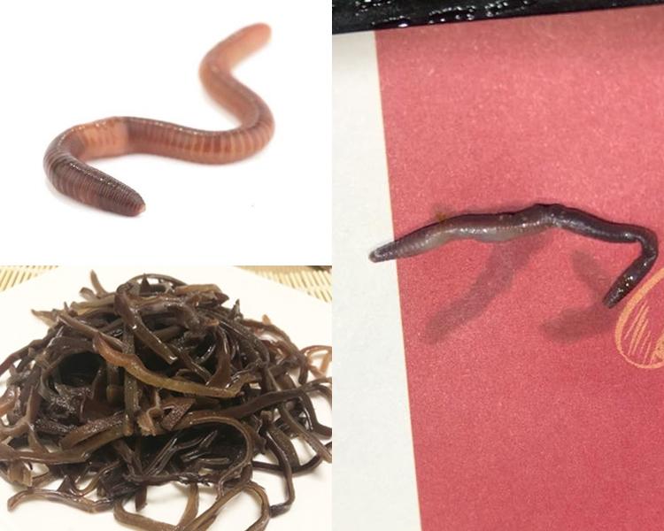 到底是米線內藏有的是蚯蚓還是木耳絲?facebook