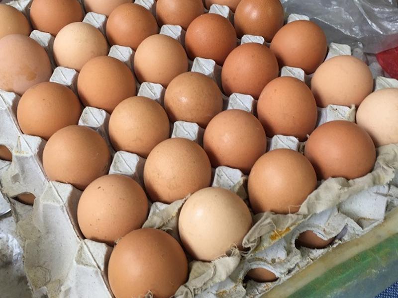 美國Rose Acre Farms於北卡羅萊納州產出的2億多顆雞蛋,傳出愛沙門氏菌感染,已全面召回中。(資料圖片)