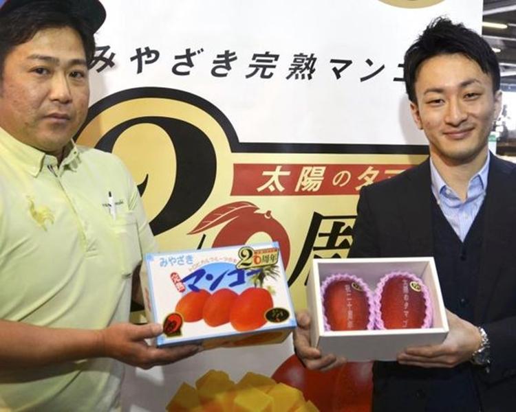 「太陽之子」是日本芒果最高級的品牌。網圖