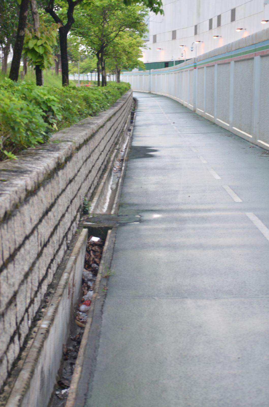 路政署承辦商去年已得悉有渠蓋被盜。