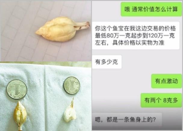 鍾先生將疑似發現「魚寶」(左)的圖片發布朋友圈後,有人指價值高昂(右)。(網圖)