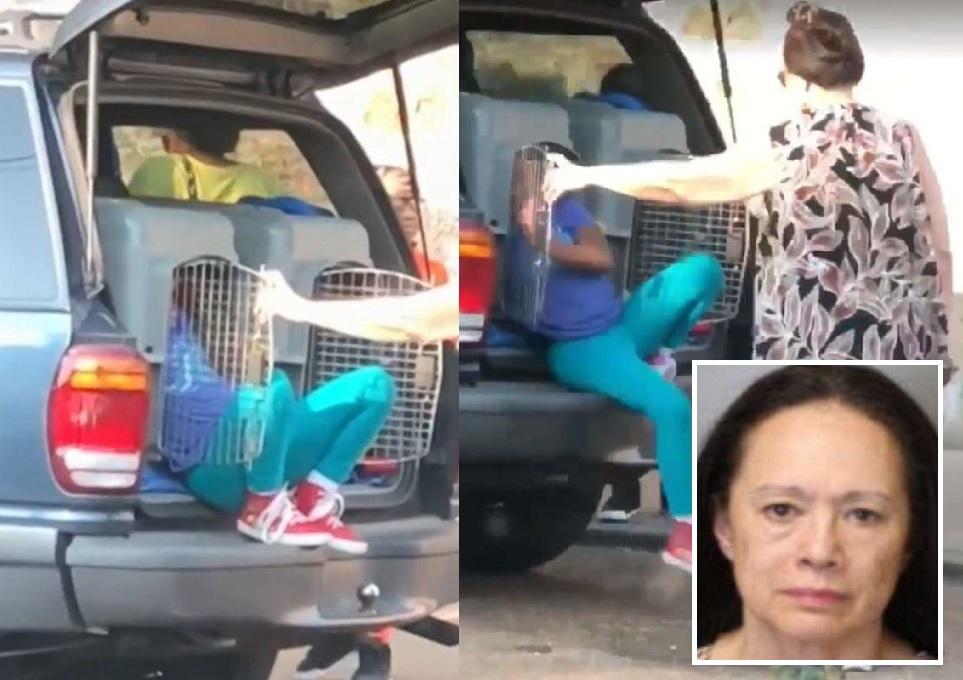 奇克斯(小圖)外出時將兩名孫女放在車尾廂的狗籠中,被警方拘捕。