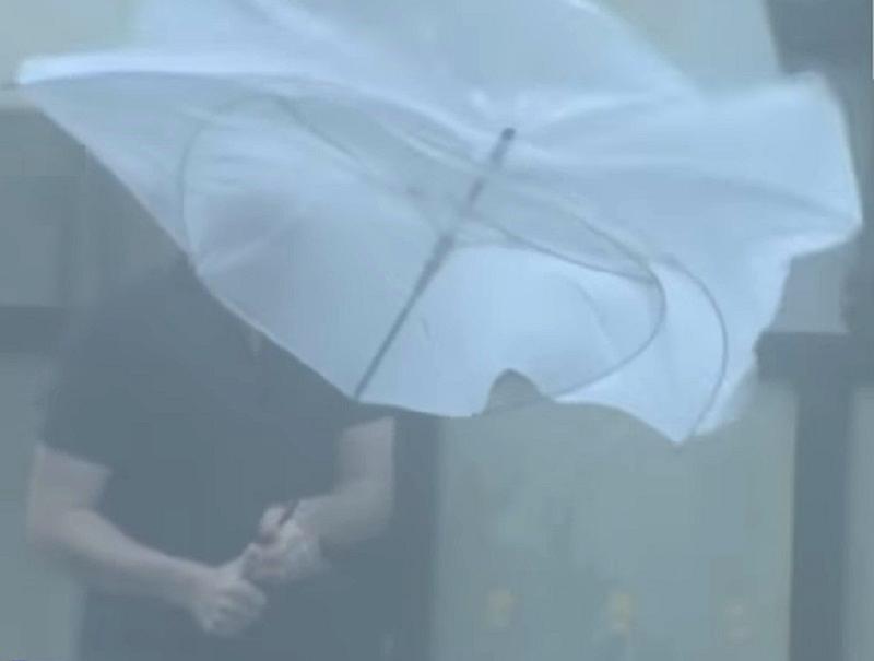 九州遭受狂風大雨吹襲。網上圖片