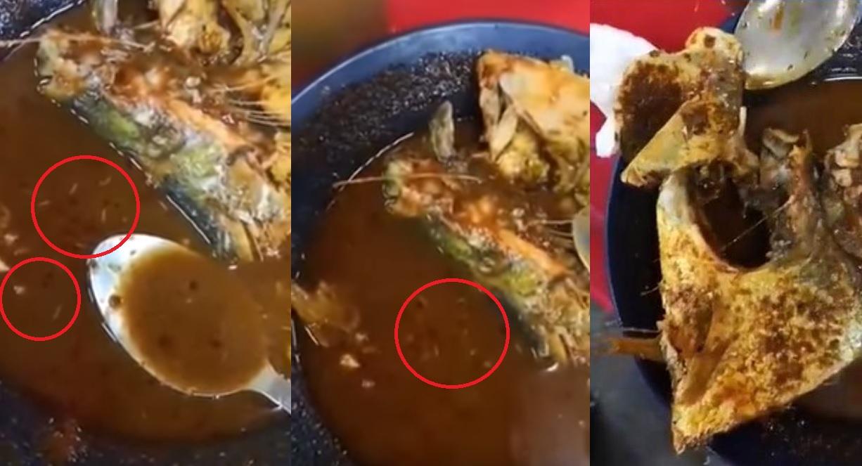 有食客進食亞參一款招牌菜時,發現碗內餸菜有蛆蟲。