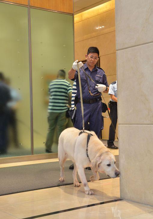 一隻搜索犬亦到場協助蒐證。林思明攝