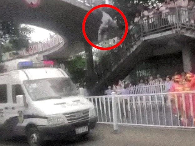 男子(紅圈)突從行人天橋上跳下。(網圖)