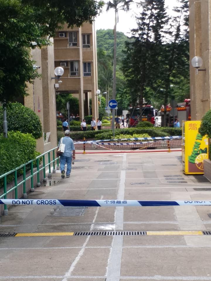 康盛花園發生縱火及屍體發現案。facebook温室小花圖片