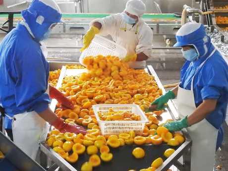 國家統計局昨天公布,內地7月份消費者價格指數按年上漲2.1%,略超市場預期。