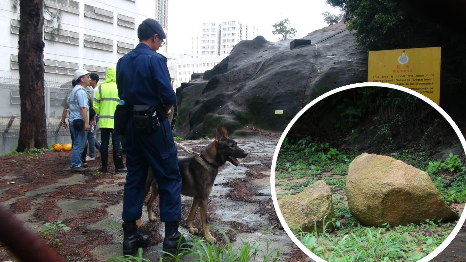 荔枝角收押所後山有大石滾下撞毀圍網,懲教署職員出動警衞犬戒備。林思明攝