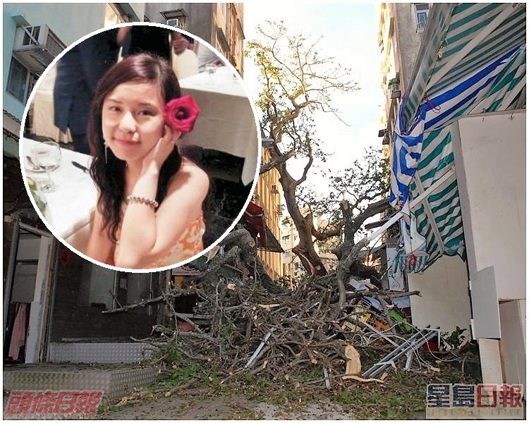 10年前赤柱古樹壓死19歲女生莊頌賢。資料圖片