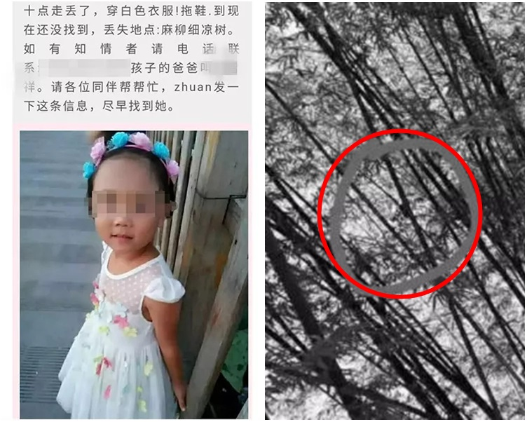 鄰居在距離劉家100米處的石崖下的樹林中發現了女孩的屍體。網圖