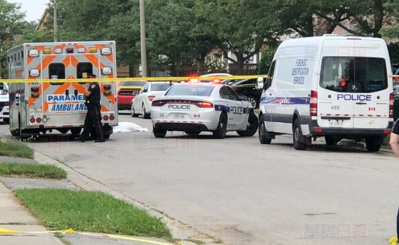 早上6:30分,警方又接到報案,在Sunforest Drive及Sandalwood Parkway East一帶發生槍擊,一人死亡。(網圖)