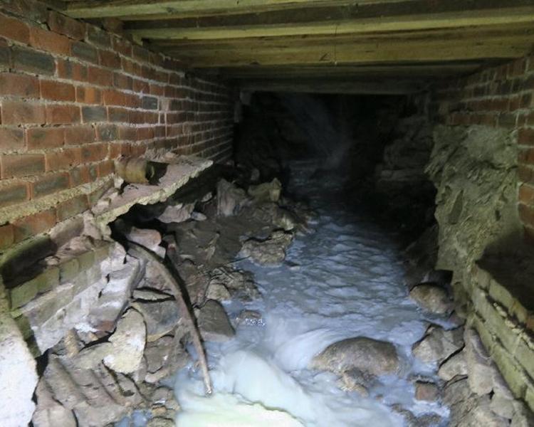 清遠豆品(香港)有限公司排放未經妥善處理的工業廢水入河流。政府圖片