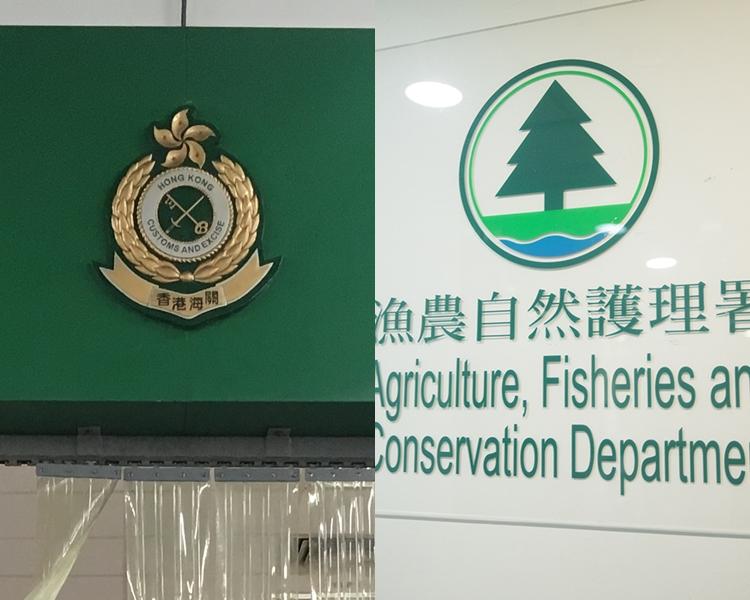 香港海關與漁農自然護理署,加強打擊走私瀕危物種的活動。