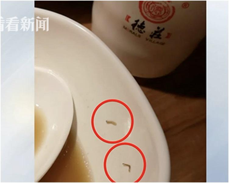 火鍋裡吃出了幾條白蟲。